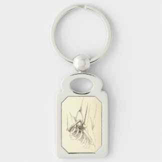 Vintage Anatomy | Shoulder Joint (circa 1852) Silver-Colored Rectangle Key Ring
