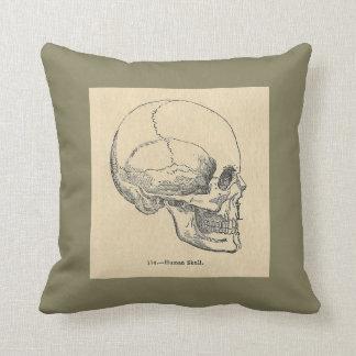 Vintage Anatomy Skull Throw pillow