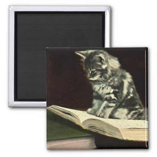 Vintage Animal, Cute Victorian Kitten Reading Book Square Magnet