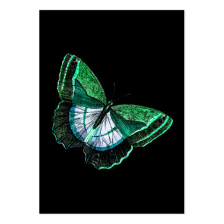 Vintage Antique Green Butterfly 1800s Illustration Pack Of Chubby Business Cards