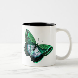 Vintage Antique Green Butterfly 1800s Illustration Two-Tone Mug