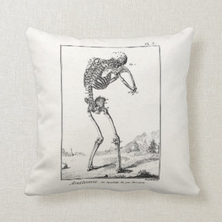 Vintage Antique Human Skeleton Medical Anatomy Cushion