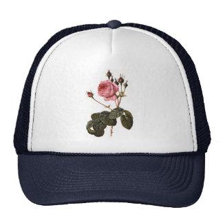 Vintage Antique Pink Garden Roses in Bloom Hat