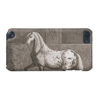 Vintage Appaloose Horse iPod Touch 5G Covers
