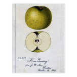 Vintage Apple Recipe Card