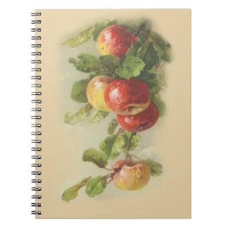 Vintage apples note book
