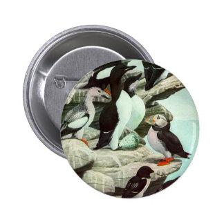 Vintage Aquatic Birds Puffins, Marine Life Animals 6 Cm Round Badge