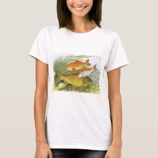 Vintage Aquatic Goldfish Koi Fish, Marine Sea Life T-Shirt
