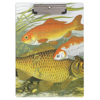 Vintage koi fish gifts t shirts art posters other for Koi fish gifts