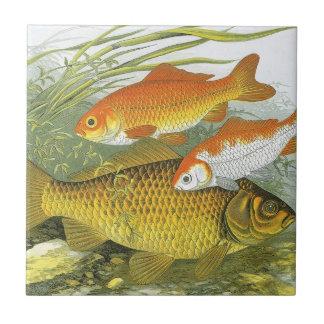 Vintage Aquatic Goldfish Koi, Marine Sea Life Fish Small Square Tile