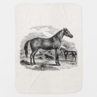 Vintage Arabian Horse Personalized Illustration Baby Blanket