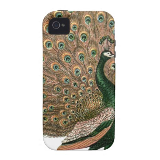 Vintage art Peafowl (peacock) plummage green gold Case-Mate iPhone 4 Cover