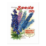 Vintage Assorted Delphiniums Seed Packet