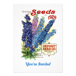 Vintage Assorted Delphiniums Seed Packet Invite