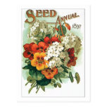 Vintage Assorted Flowers Seed Packet Postcard