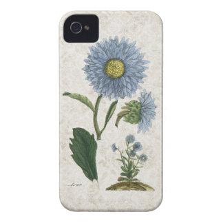 Vintage Aster flower on grunge damask background iPhone 4 Case
