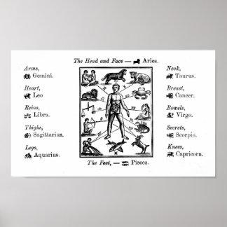 Vintage Astrology Chart Art Print Poster