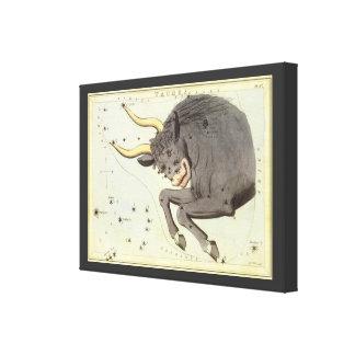 Vintage Astrology Taurus Bull Constellation Zodiac Stretched Canvas Prints