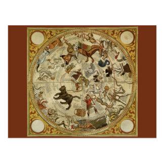 Vintage Astronomy, Celestial Star Chart, Sky Map Postcard