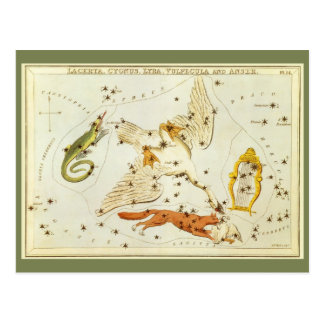 Vintage Astronomy, Constellations Stars Chart Map Postcard