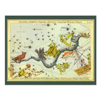 Vintage Astronomy, Hydra Snake Constellation Stars Postcard
