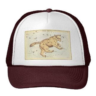 Vintage Astronomy, Ursa Major Constellation, Bear Hat