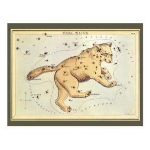 Vintage Astronomy, Ursa Major Constellation, Bear Postcard