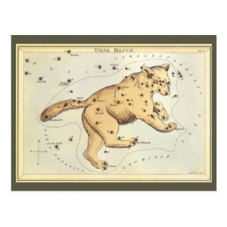 Vintage Astronomy, Ursa Major Constellation, Bear Postcard
