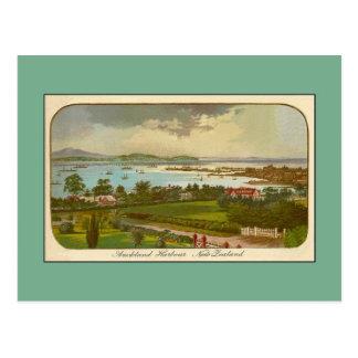 Vintage Auckland Harbour New Zealand Postcard