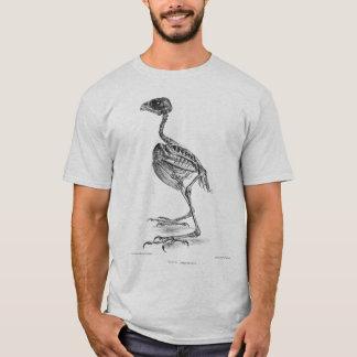 Vintage baby bird skeleton etching T-Shirt