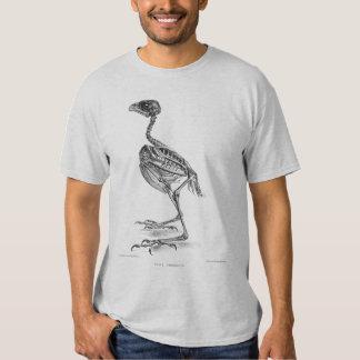 Vintage baby bird skeleton etching t shirts