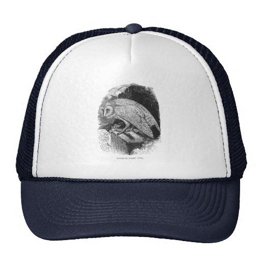 Vintage Barn Owl Mesh Hats
