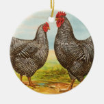 Vintage Barred Plymouth Rock Chickens Ornament