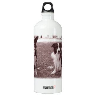 Vintage BC Brothers SIGG Traveller 1.0L Water Bottle
