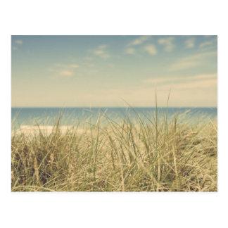 Vintage Beach Postcard.