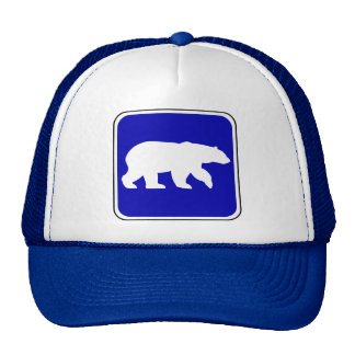 Vintage Bear Sign Cap