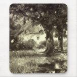 Vintage - Beautiful Landscape - Cottage & Stream Mouse Pad