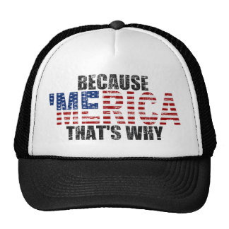Vintage BECAUSE 'MERICA THAT'S WHY Hat