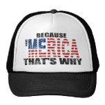 Vintage BECAUSE 'MERICA THAT'S WHY Trucker Hat
