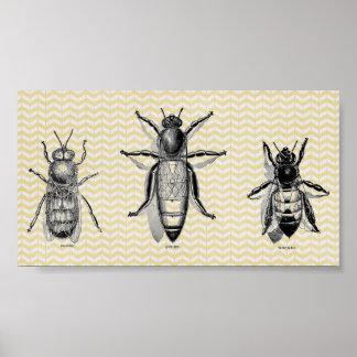 Vintage Bee Art Poster