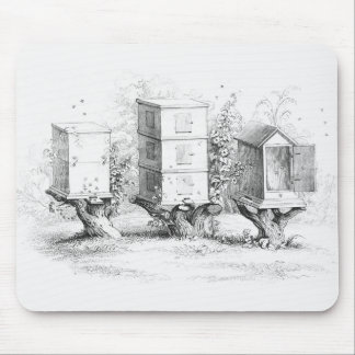 Vintage Bee Boxes Honey Mouse Mat