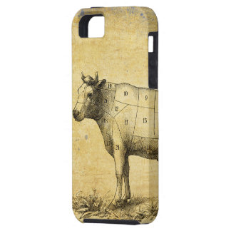 vintage beef chart with numbered cuts iPhone 5 cases