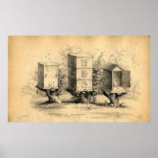 Vintage Beekeeping Beehives Beehive Print