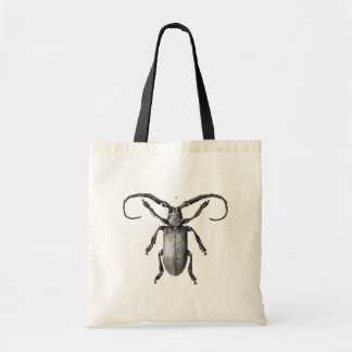Vintage beetle illustration bag