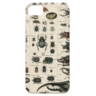 Vintage Beetle Illustration Barely There iPhone 5 Case