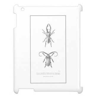 Vintage beetle illustration case case for the iPad 2 3 4