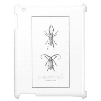 Vintage beetle illustration case case for the iPad 2 3 4
