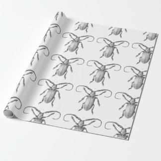Vintage beetle illustration gift paper wrapping paper