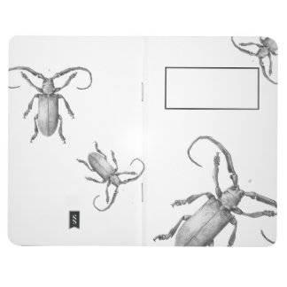 Vintage beetle illustration notebook