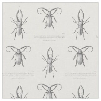 Vintage beetle illustration textile fabric